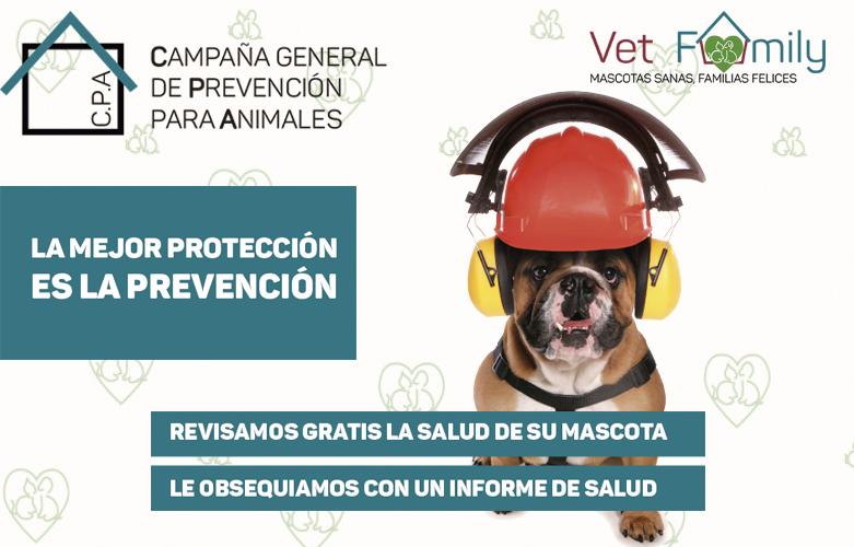 campaña-prevencion-animales-noticias-clinica-veterinaria-massanassa
