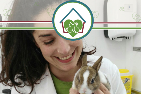 conejito-clinica-veterinaria-vetfamily