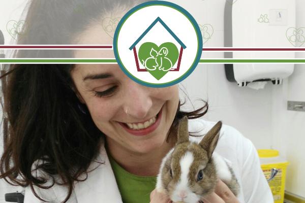 conejito-clinica-veterinaria-vetfamily