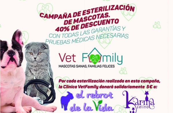 Campaña solidaria de esterilización para mascotas: perros y gatos