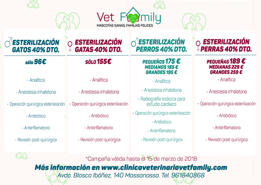 Ofertas de la Campaña solidaria de esterilización para mascotas: perros y gatos