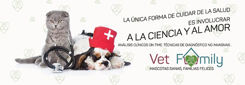 insuficiencia-renal-felina-NUESTROSTRATAMIENTOS-clinica-veterinaria-vetfamily
