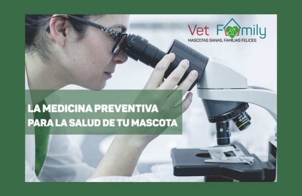 medicina-preventiva-clinica-veterianaria-massanassa-vetfamily-tarifas-planas